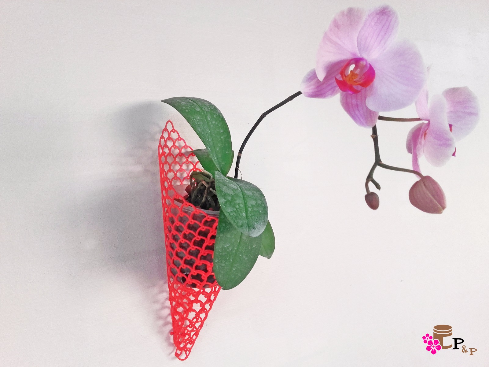 Cone Net Pots For Vertical Garden Orchid Hanging Pots